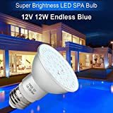 KOLLNIUN 12V LED SPA Light Bulb 12W Endless Dark