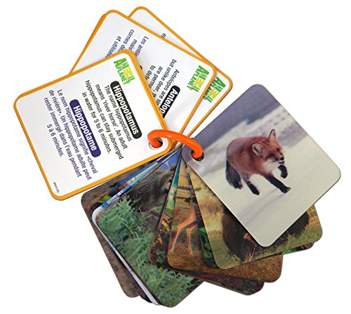 Animal Planet 3D Flash Cards - Wild - Planet Card