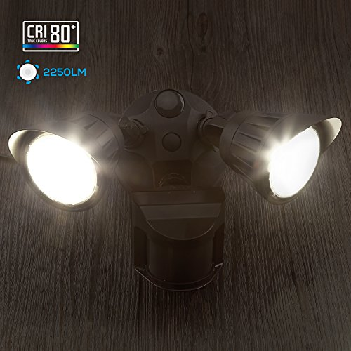 Dual-Head Motion Activated LED Outdoor Security Light