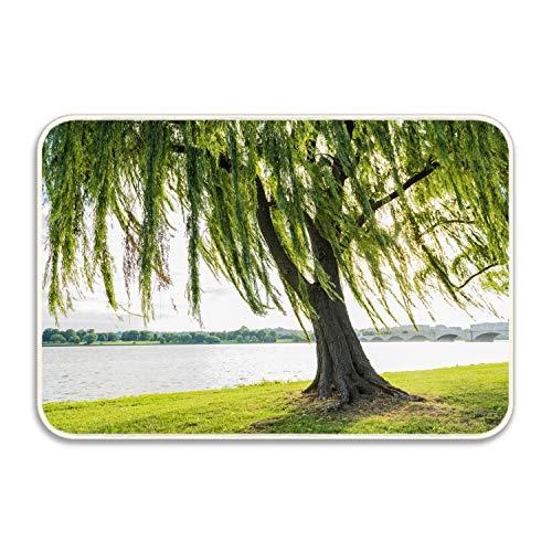 (Niaocpwy Willows and Tree Trunks Kitchen Floor Mats Doormat Door Mats in The Hall Bathroom Non-Slip Mats Bedroom Bedside Mats 16 x 24 inch)