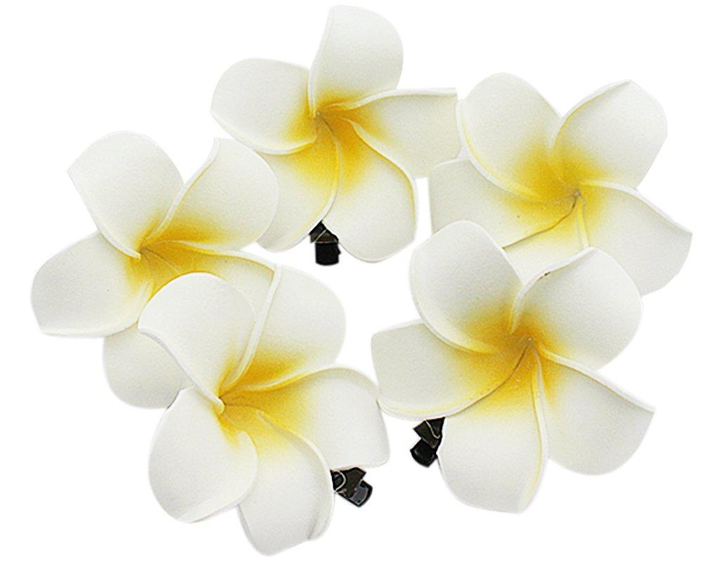 BONAMART 5 Stück Haarclip Haarklipp Blumen Haarklammer Haarspange Ansteckblume BroschWeiße