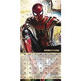 Avengers: Infinity War Mini Wall Calendar (2019)