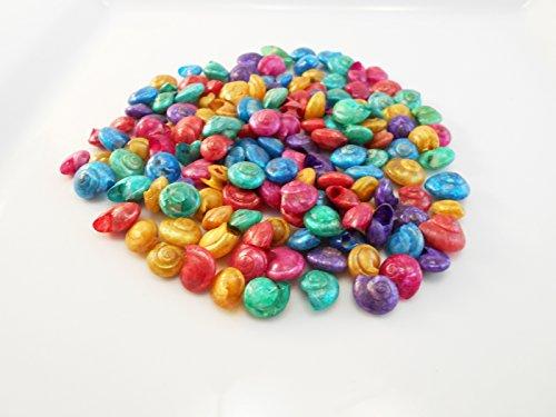 (4 oz (about 250 shells) Dyed Umbonium Mini Shells (1/2