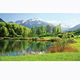 Biggies- Window Well Scenes Wall Art- Lake, 60'' x 100''