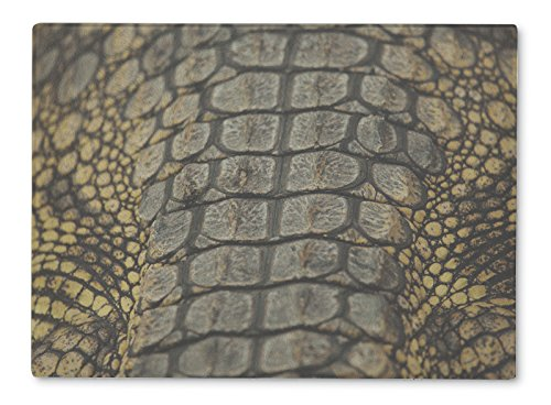 (Gear New Glass Cutting Board and Serving Dish, Skin Of Alligator, also makes great accent decor piece, 11x8, 221888GN)