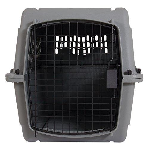 Buy plastic dog crate