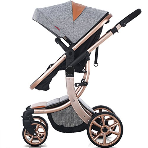 AIMILE Newborn Baby Pram Infant Foldable Anti-Shock High View Jogger Stroller Multi-Positon Reclining Seat Stroller Pushchair(Grey)