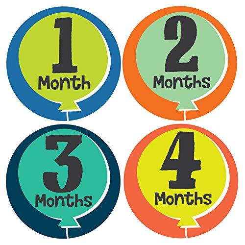 【新品本物】 Little Monthly Fete Monthly Stickers B00R578FYE - Baby Stickers Girl - Months 1-12 by Lucy Darling B00R578FYE, タイハクク:10d3a0f6 --- mvd.ee