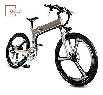 TZ Bicicletas eléctricas Plegables batería de Litio de 48 V 10 Ah 250 W para Bicicletas