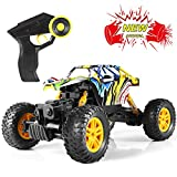 Remote Control Car, Graffiti RC Cars Kid Toys for Boys Girls All Terrain 4WD & Dual Motors...