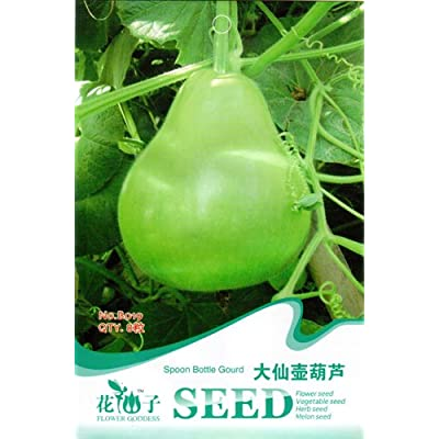 Business sasha Each Pack 8 Seed Exquisite Lovely Emerald Green Spoon Bottle Gourd Seed (1) : Garden & Outdoor