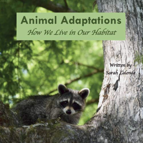 Animal Adaptations: How We Live in Our Habitat