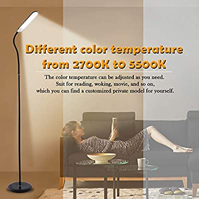 Twinkle Star Floor Lamps For Living Room Touch Remote Control 60 Led Reading Light Gooseneck Standing Lamp 10w Dimmable And Color Flexible Adjustable Led Floor Lights For Bedroom Chair Couch Amazon Sg