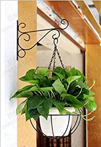 3-Pack 11.8'' Plant Pot Iron Bracket Hooks For Planter Bird Feeder Lantern Windbell With Screws (bronze)