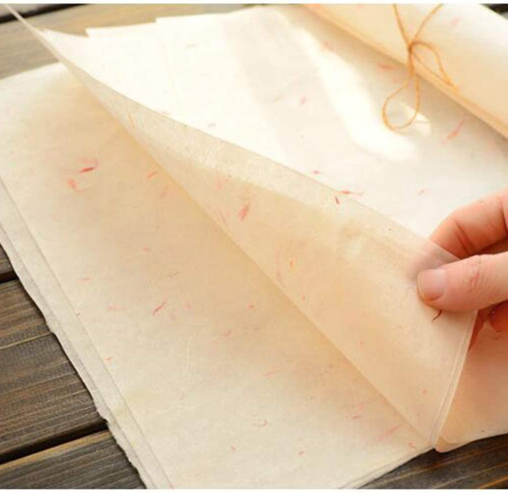 STOBOK 40Pcs Chinesische Kalligraphie Papier Nat/ürliche Pflanze Blume Pinsel Reispapier Handwerk Handgemachte Kunst Tissue Xuan Papier Brief Schreibpapier