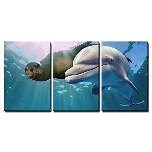 "wall26 - 3 Piece Canvas Wall Art - Dolphin and Sea Lion Underwater on Ocean Background Looking at You - Modern Home Decor Stretched and Framed Ready to Hang - 24""x36""x3 Panels"