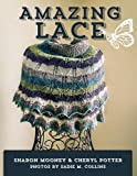 img - for Amazing Lace: 13 Handpainted Shawls With and Without Beads book / textbook / text book