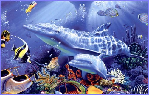 Underwater Dolphins, Tropical Fish & Coral - Vinyl Stained Glass Film, Static Cling Window Decal