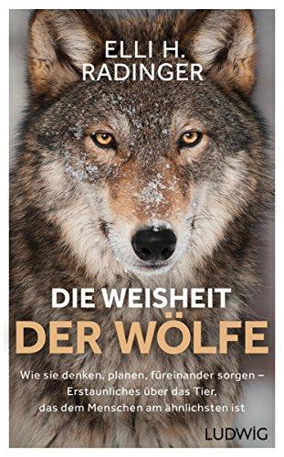 Die Weisheit der Wölfe: Wie sie denken, planen, füreinander sorgen. Erstaunliches über das Tier, das dem Menschen am ähnlichsten ist (German Edition)