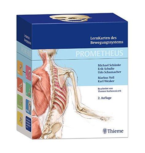 prometheus-lernkarten-des-bewegungssystems