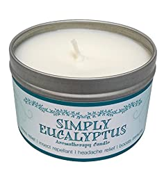 Our Own Candle Company Soy Wax Aromatherapy Scented Candle, Simply Eucalyptus, 6.5 Ounce