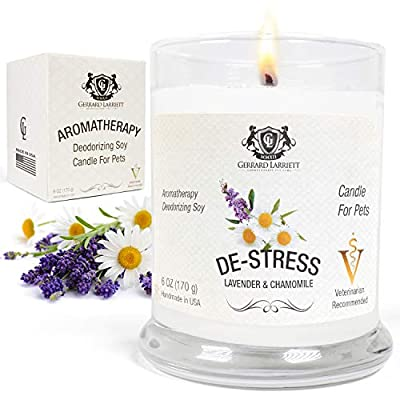 Lavender & Chamomile Aromatherapy Deodorizing Soy Candle for Pets, Pet Odor Eliminator & Animal Lover Gift - 6 OZ (170 g) - Genuine Gerrard Larriett Aromatherapy Pet Care: The affordable luxury of our soothing essential oil scents and our charming 6oz. glass jars are why Gerrard Larriett is the name trusted by pet parents to add calming pet aromatherapy and odor elimination to their homes The Pet Smell Eliminator: Happy customers use our pet odor eliminator candle to keep their houses from smelling like kennels and litter boxes (as well as other household & kitchen odors); Our unique odor neutralizing candles don't drown odors like cheap dog odor candles or ugly diffusers, instead they actively cancel odors leaving a clean and fresh scent, without any of the heavy perfumes that overpower sensitive pet noses Pet Anti-Anxiety & De Stress Candle: Gerrard Larriett candles use pure essential oils for human-grade aromatherapy that's Veterinarian recommended; Select any of our gentle spa-quality aromas and enjoy a premium stress relief candle that helps your pets settle, relax, or recover - living-room-decor, living-room, candles - 51nPLDClMaL. SS400  -