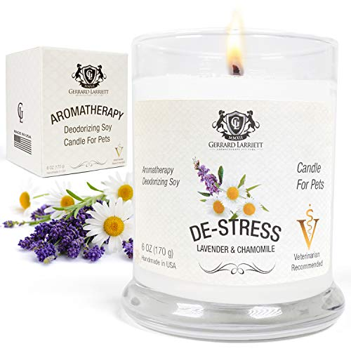 Lavender & Chamomile Aromatherapy Deodorizing Soy Candle for Pets, Pet Odor Eliminator & Animal Lover Gift - 6 OZ (170 - Lavender Calming Aromatherapy