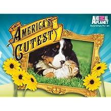 America's Cutest Season 2