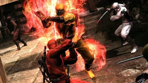Ninja Gaiden 3 Edition Collector: Amazon.es: Videojuegos
