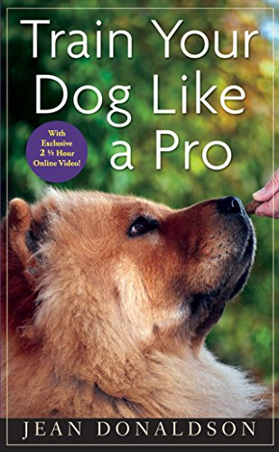 (Train Your Dog Like a Pro)