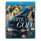 White God