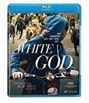 Cover Image for 'White God'