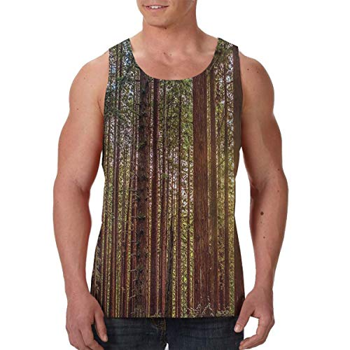 Summer Men's Boys Vest T-Shirts Crewneck Nature Redwood Forest in California Sleeveless Vest for Workout Riding Holiday, Novelty Soft Athletic Regular Fit Sportswear Athletic Tank Tops -