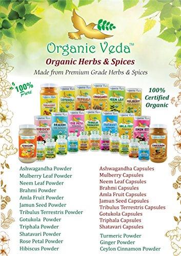51nPeyi4poL - Organic Turmeric Powder - 7Oz. ★ USDA Certified Organic ★ 100% Pure and Raw Organic Herbal Super Food Supplement. Non GMO. Gluten FREE. US FDA Registered Facility. ALL NATURAL!