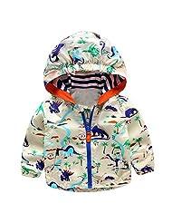 Boys Baby Kid Cartoon Dinosaur Hooded Coat Jacket Outwear Hoodies Windbreaker