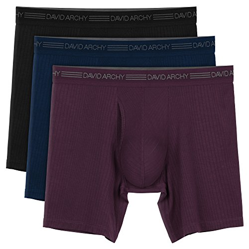 David Archy Men's 3 Pack Ultra Soft Micro Modal Boxer Briefs with Fly (L, Black/NavyBlue/Wine-Drop ()