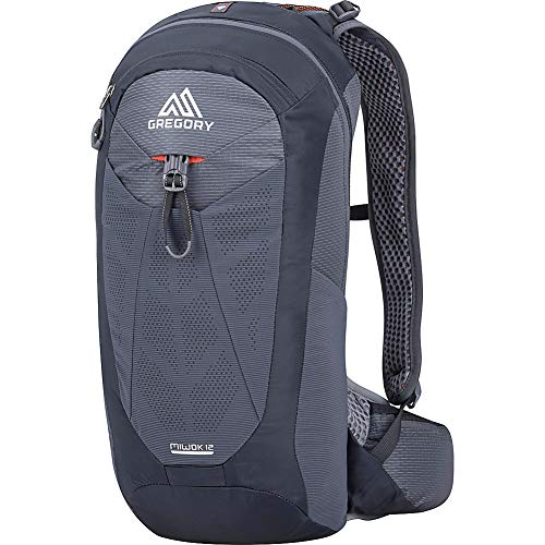 Gregory Miwok 12 Hiking Backpack (Flame Black)