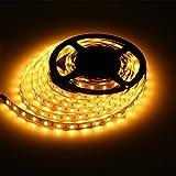 Susay® Waterproof Warm white LED 3528 SMD 300LED 5M Light Flexible Strip 12V 2A 24W 60LED/M