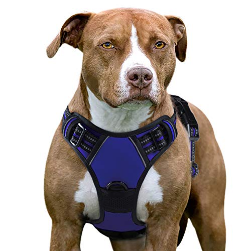 Eagloo Dog Harness No