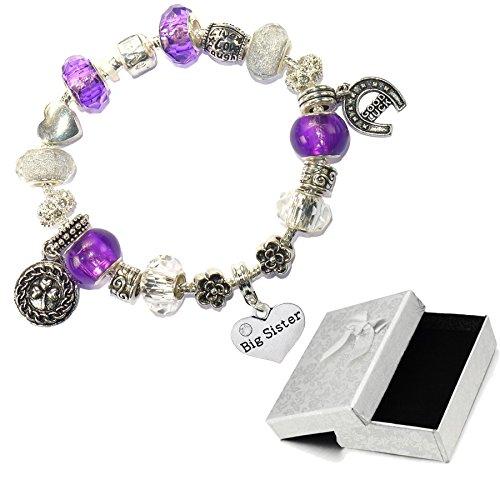 Charm Buddy Big Sister Purple And Silver Crystal Good Luck Pandora Style Bracelet With Charms Gift (Big Sister Italian Charm)