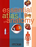 img - for Essential Atlas of Anatomy book / textbook / text book