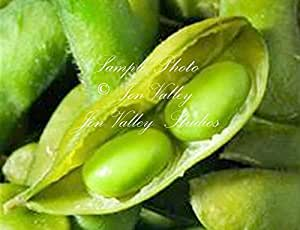 SoyBean seed! Be Sweet Edible Edamame Natural Non GMO Delicious Raw or Cooked (75 seeds)