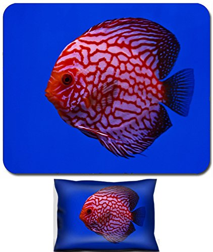 Liili Mouse Wrist Rest and Small Mousepad Set, 2pc Wrist Support IMAGE ID: 13195253 Pigeon discus fish
