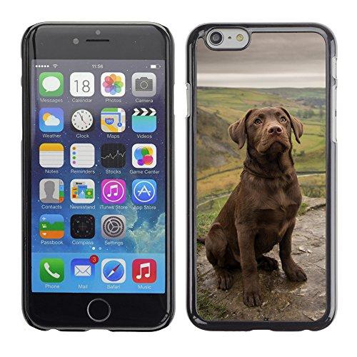 """Premio Sottile Slim Cassa Custodia Case Cover Shell // F00012137 chien // Apple iPhone 6 6S 6G 4.7"""""""