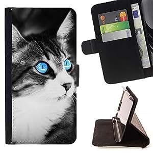 Momo Phone Case / Flip Funda de Cuero Case Cover - Azul del ojo de gato;;;;;;;; - Apple Iphone 5 / 5S