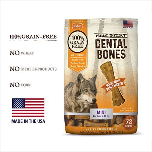 Dental Nylabone Chew Bone - Nylabone Primal Instinct Dog Dental Chews | Grain Free Dog Treats Made in The USA | Mini Size