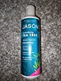 JASON NATURAL PRODUCTS SHAMPOO,T TREE OIL THERPY, 17.5 FZ