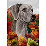 Best of Breed Fall Leaves Garden Size Flag Weimaraner Review