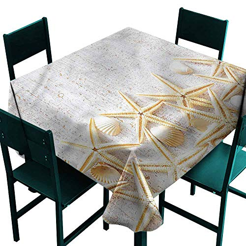 (DONEECKL Dust-Proof Tablecloth Seashells Sea Shells on Timber Great for Buffet Table W63 xL63)