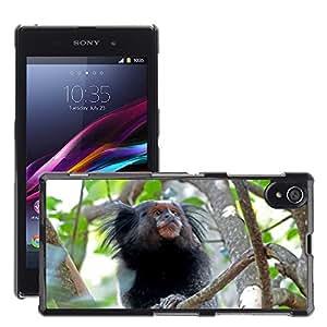 Just Phone Cover Etui Housse Coque de Protection Cover Rigide pour // M00140090 Mono rama de árbol Look Naturaleza // Sony Xperia Z1 L39 C6903 C6906 C6943 C6902